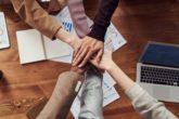 Pracovní nabídka: Projektový manažer/projektová manažerka Klimatického týmu